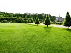 Création terrasse bois Clamart